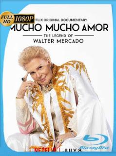 Mucho mucho amor: La leyenda de Walter Mercado (2020) HD [1080p] Latino [GoogleDrive] SilvestreHD