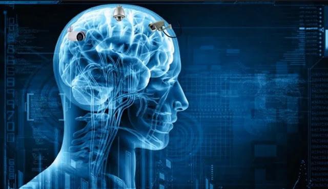 Gli scienziati monitorano i cervelli che riproducono i ricordi in tempo reale