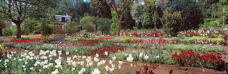 Photographie panoramique de Christophe Daguet du Jardin des Plantes de Caen