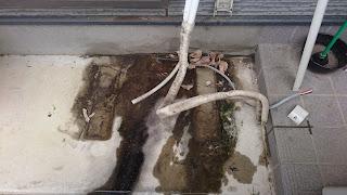 エアコンの排水によって堆積したカビや汚れ