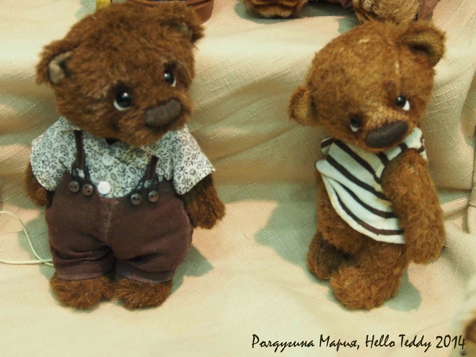 Hello Teddy 2014