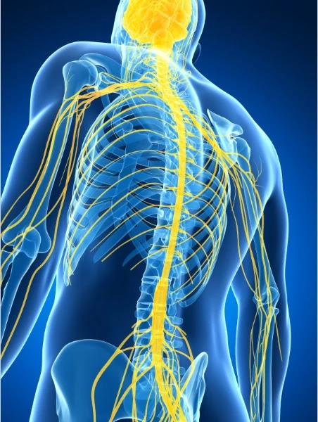Peripheral Nerve Stimulation - Lower back pain