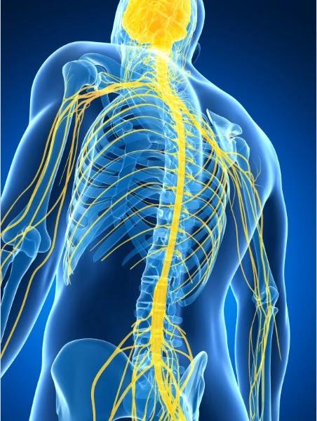Peripheral Nerve Stimulation - Lower back pain
