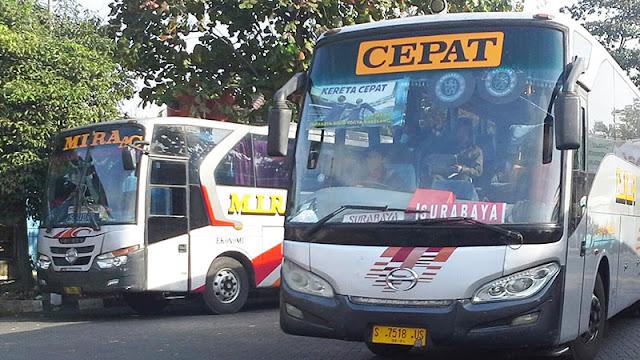 Asal-Usul Nama Bus PATAS