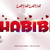 Mp3 Audio||Lavalava-Habibi