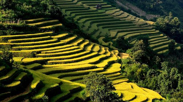 Highlights Northwest & Northeast Vietnam 3