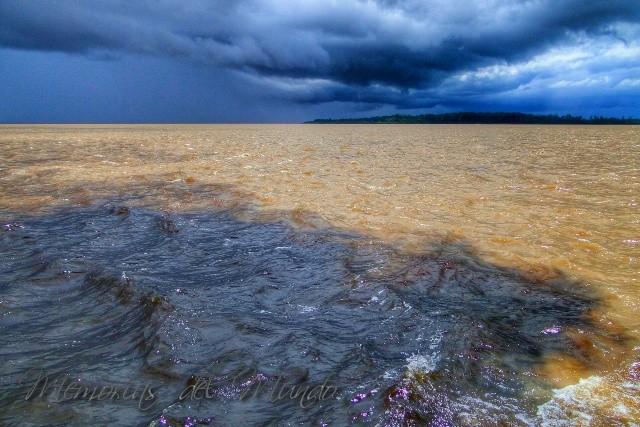 Navegar por el Amazonas al Encontro das Aguas