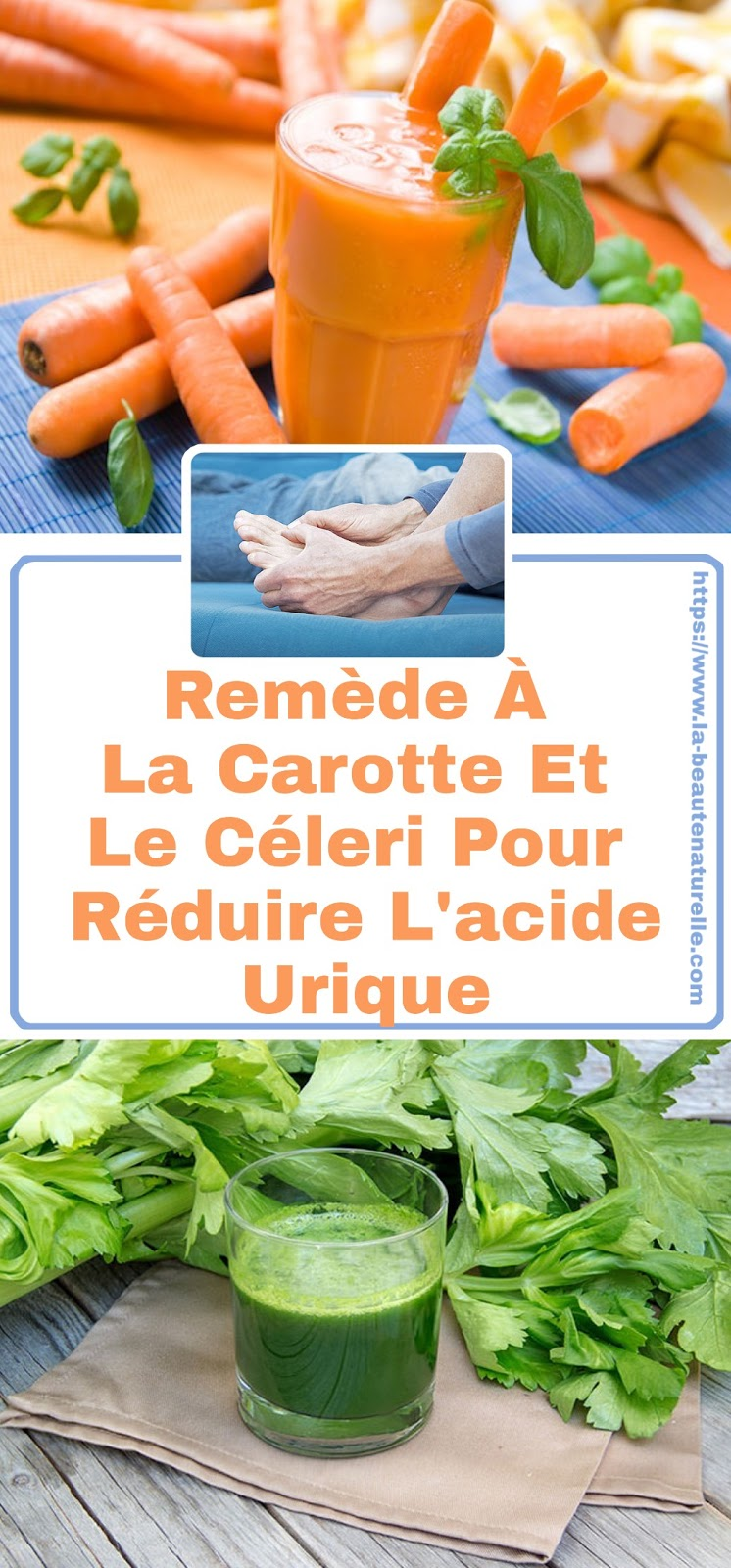 Remède À La Carotte Et Le Céleri Pour Réduire L'acide Urique