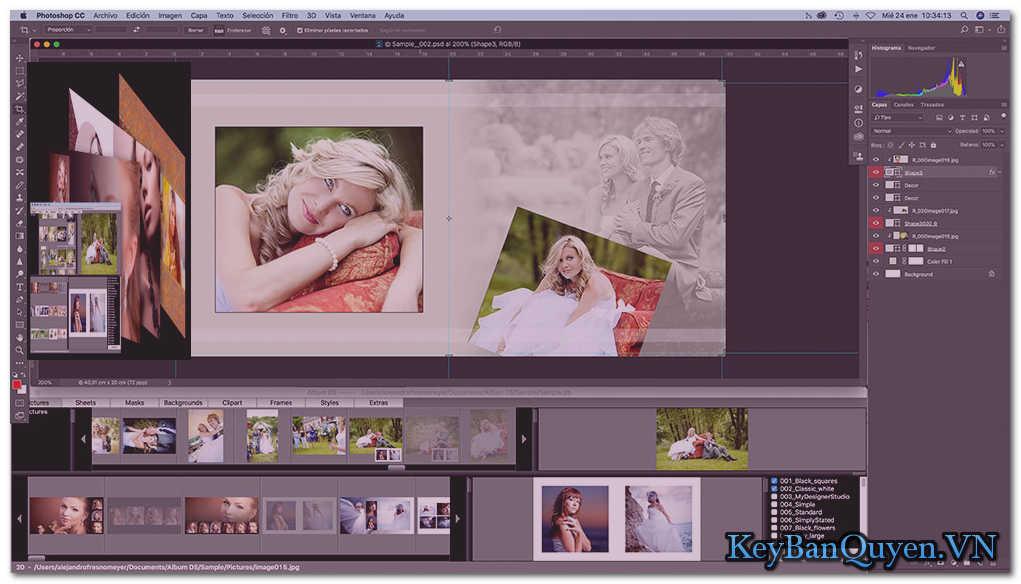 Download Album DS 11.4.1 (x64) Full Key Serrial, Phần mềm tạo Album ảnh chuyên nghiệp và đẹp mắt theo phong cách của riêng bạn