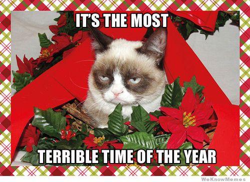 Grumpy+Cat+Christmas+Meme christmas bah humbug introvert mind