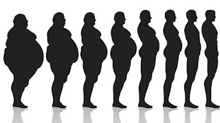 Secrets For Quicker And Bigger Weight Loss Results