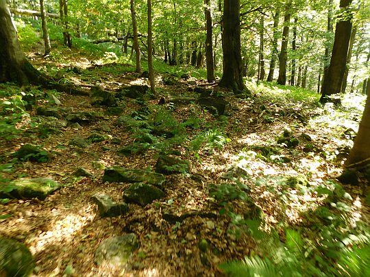 Luźne kamienie pokrywające ścieżkę.