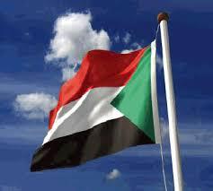 شكراً أصدقاء السودان