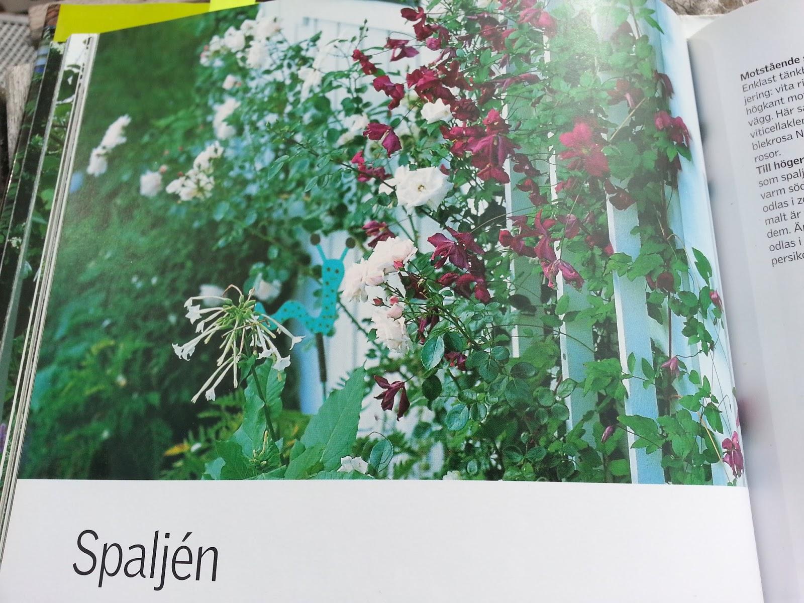 """Viktoria grön: inspiration från christel kvant """"den lilla trädgården"""""""