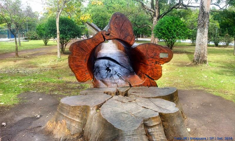 Escultura orgânica feita com árvore | Ibirapuera SP