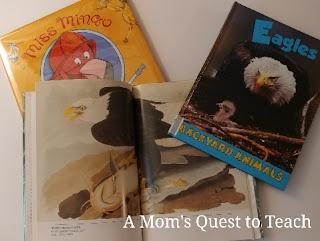 flamingo and eagle books