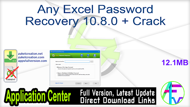 Any Excel Password Recovery 10.8.0 + Crack