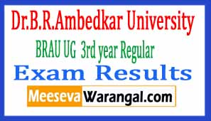 Dr.B.R.Ambedkar University BRAU UG (BA / BCom / BSc / BBM) 3rd year Regular Exam Results 2017