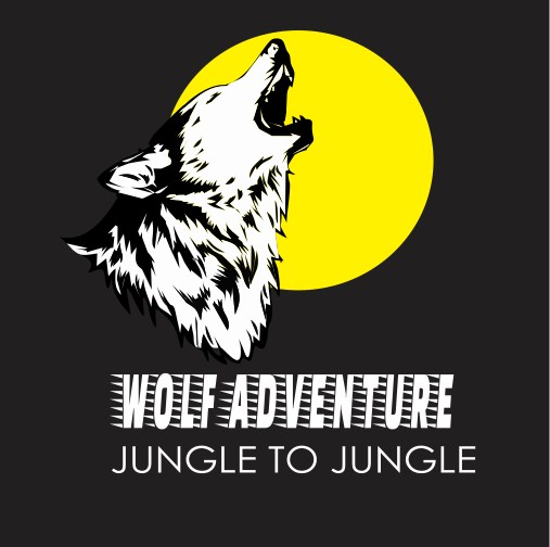 illustrator design a logo wolf