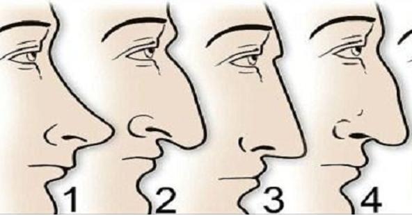 Bentuk Hidung Anda Menggambarkan Tentang Diri Anda ...
