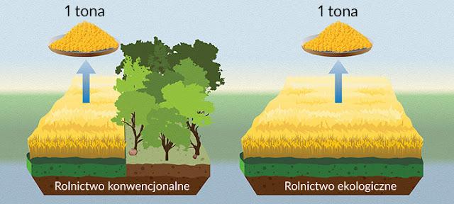 rolnictwo organiczne