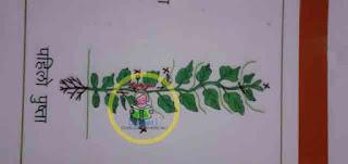 Lahare tarkari baali ma kaatchhaat prabidhi(3G cutting)