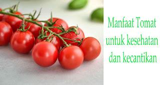 12 Manfaat Buah Tomat untuk Kesehatan dan Kecantikan
