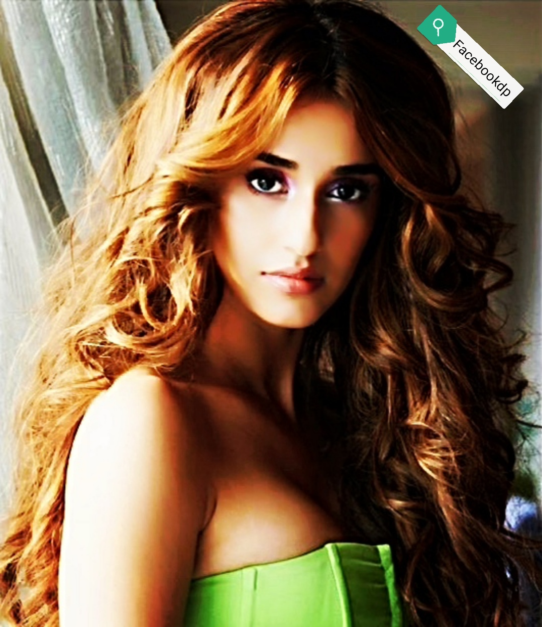 dishapatani indian hottest actresses