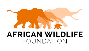 African Wildlife Foundation (AWF)