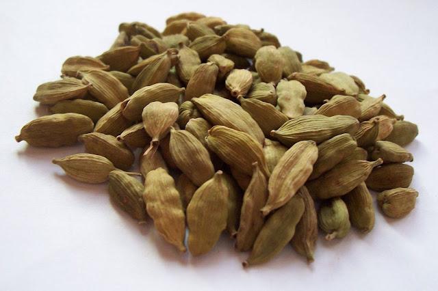 Quả Đậu khấu - Amomum cardamomum - Nguyên liệu làm thuốc Chữa Bệnh Tiêu Hóa