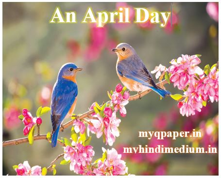 Download Class 8 English notes An April Day  | WBBSE