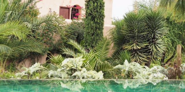 Le Jardin Des Douars