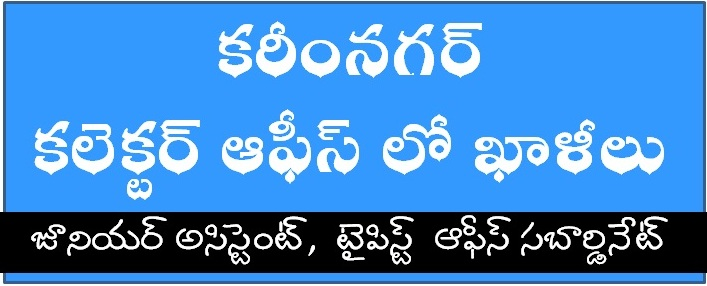 Students And Social Services  English Short Essay  Namaste Kadapa Jobs