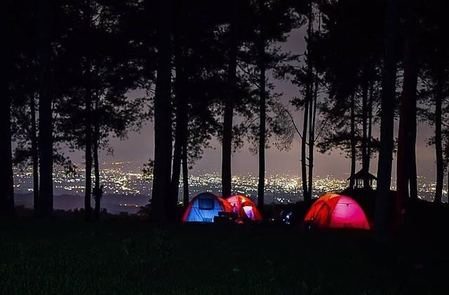 Camping di Hutan Pinus Limpakuwus