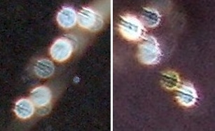 striped orbs in water drops