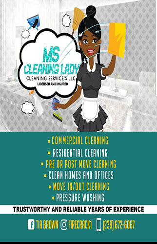 Ms Cleaning Lady