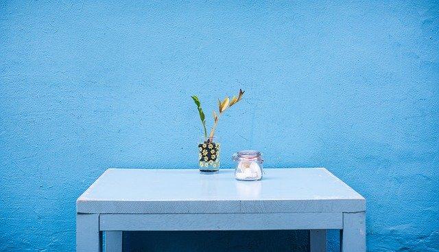 pas tanaman diatas meja