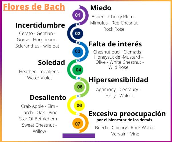 Los 7 grupos de las Flores de Bach