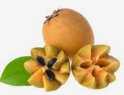 Benefits Chikoo Fruit / Sapodilla