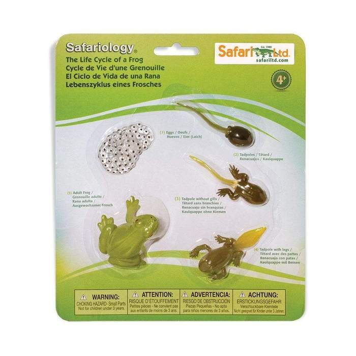 safari frog life cycle figurine set