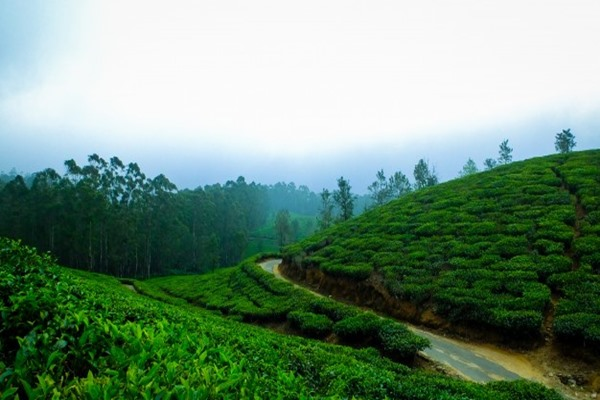 8 Coolest Places In India During Summer