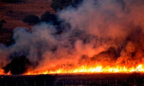 Kebakaran berkobar di sebuah lapangan di sisi perbatasan Libanon dekat kota Avivim Israel utara setelah terjadi baku tembak pada hari Minggu.