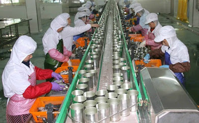 Manufacturing canned tuna process till ready to sell in the market