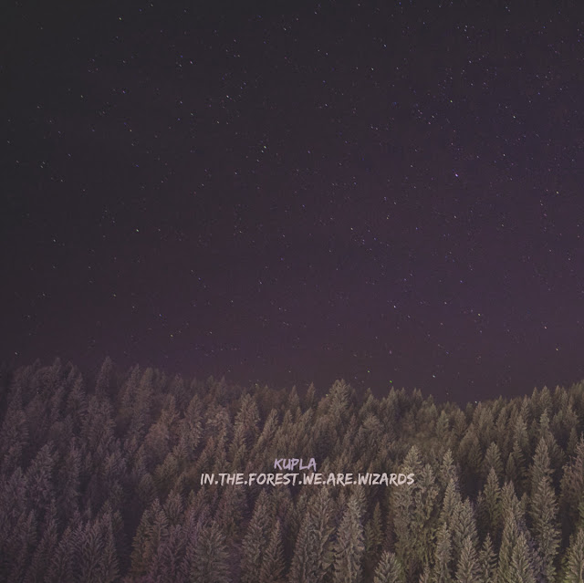 KUPLA 'In.The.Forest.We.Are.Wizards' (Instrumentals)