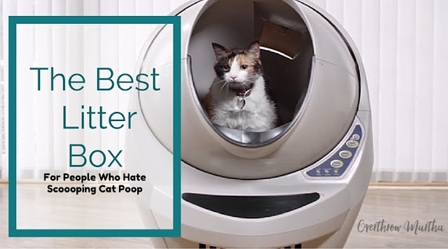 Self Cleaning Litter Box Review and $25 off Litter Robot