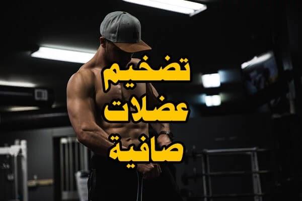 أفضل نظام غذائي لتضخيم عضلات صافية بدون دهون 6 وجبات + نظام تدريبي