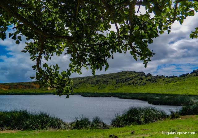 Cratera alagada do Vulcão Rano Raraku, na Ilha de Páscoa