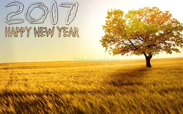 New Year 2017 Nature Wallpapers Download For Dektop/PC