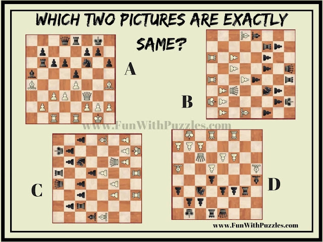 Find Two Exactly Same Pictures : Chess Solo