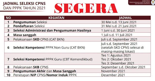 Pendaftaran CPNS dan PPPK Dimulai 30 Mei 2021! Berikut Jadwal Lengkapnya